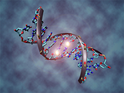 Science confirms you really can change your DNA