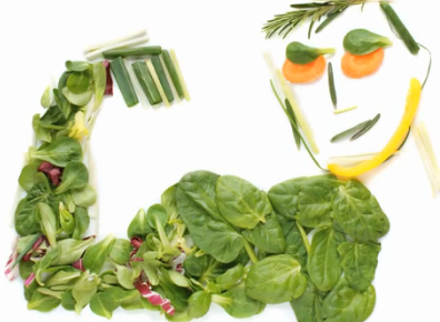 Treating the causes of disease with lifestyle medicine