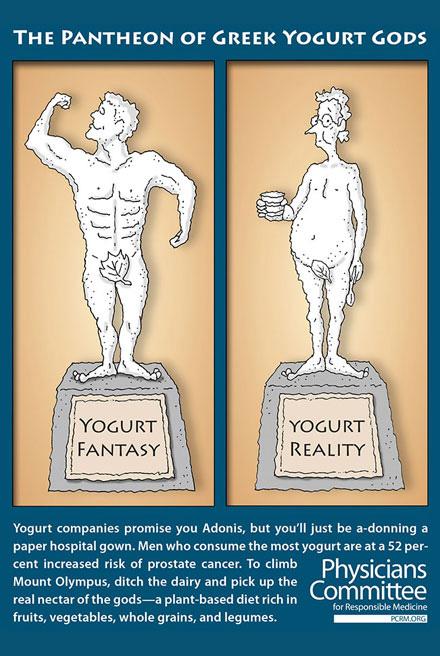 Yogurt is not health food