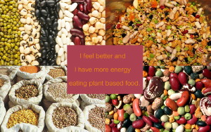Benefits of a Low-Fat Vegan Diet for MS