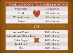 Ultimate Guide To Free Calorie Density Resources 2